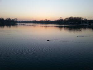Sprüche zum Nachdenken - See mit Enten