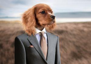 Lustige Sprüche - Hund mit Anzug